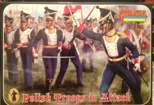 Napoleonic Polish Infantry in Attack